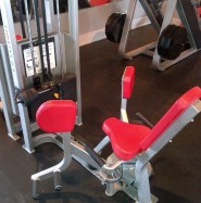 Used cybex hip adductor